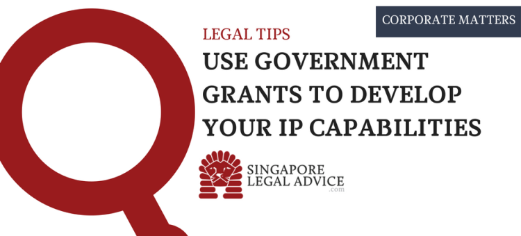 use government grants to develop your ip capabiliteies