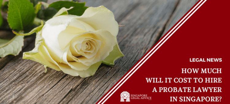 "Featured image for the ""How Much Will It Cost to Hire a Probate Lawyer in Singapore"" It features a white rose."
